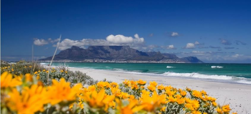 Cape Town Safari Holidays Cape Town Holidays Stellenbosch South Africa