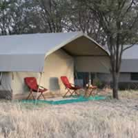 Serengeti Wilderness Camp C