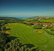 Golf Safari South Africa Beach Holiday Zimbali Durban Big 5 Vacation