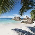 South African Safari Seychelles Mahe Island Hopping Praslin Honeymoon