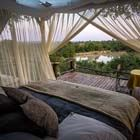 Star Beds Safari Sleep Out Garonga Kruger Durban Beach South Africa