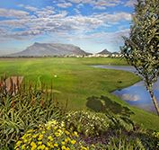Golf Holiday Cape Town South Africa Vacation Milnerton Clovelly Zalze