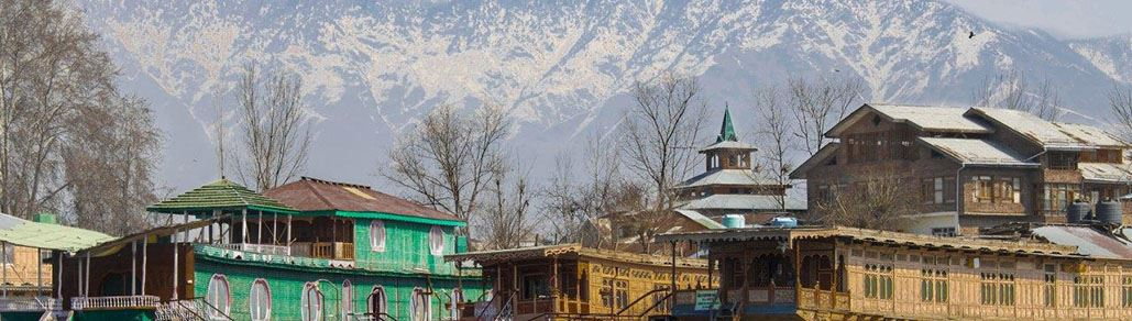 Srinagar Kashmir Snow Leopard Holiday Packages Tours Leh Ladakh