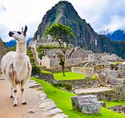 Wheelchair Accessible Peru Holiday Machu Picchu Cusco Nazca Vacation