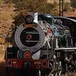 Rovos Rail Golf Train South Africa Kruger Durban Garden Route Cape Town